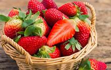 种子业务-瓜果蔬菜4.jpg
