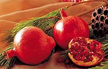 种子业务-瓜果蔬菜3.jpg