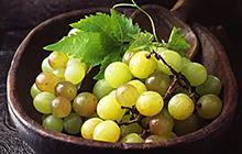 种子业务-瓜果蔬菜8.jpg
